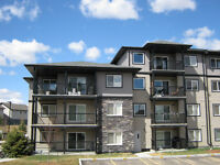 Experienced Siding Installers