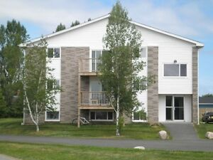 1 & 1 Bedroom and Den in Wolfville Available July & Sept 1st