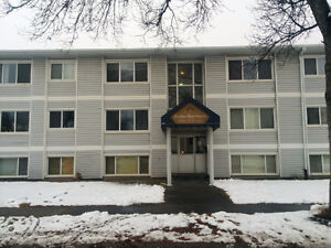 Rent NOW! Dec. FREE! Very Cozy BACHELOR Suite on Whyte ave.