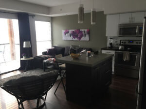 Academy Hill room for rent September 2018- April 2019