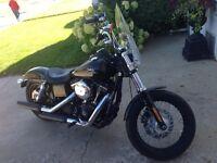 2014 Harley-Davidson FXDB 103 Cubic Inch Street Bob ONLY 1100 KM