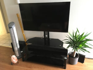 TV stand with TV mount