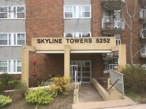 1 Bedroom Apartment Sublet Downtown Halifax