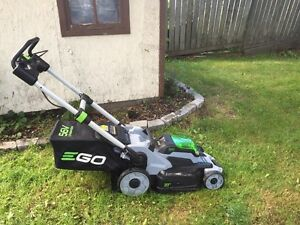 Ego lithium mower and separate weed whacked trimmer