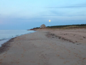 PEI NORTH SHORE DOUBLE Cottage lot  -WALK TO BEACH !