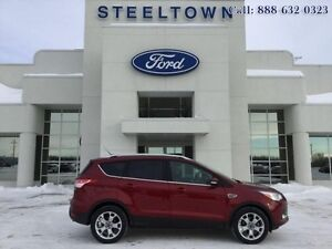 "2014 Ford Escape ""TITANIUM AWD LEATHER/MOON""   - $162.86 B/W"