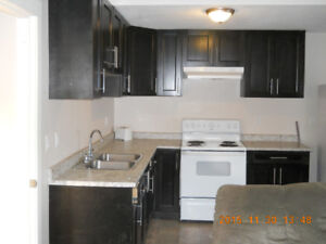 1 Bed 1 Bath for rent $850