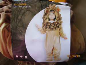 Halloween Costume - Adorable Lion Costume for a toddler