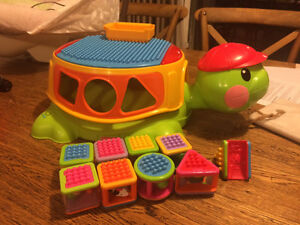 Build & Spill Musical Turtle