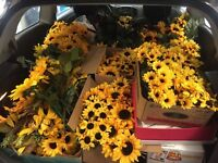 $300 worth of sunflowers/center pieces