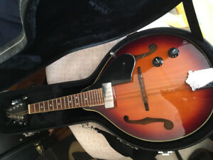Two mandolins in excellent condition