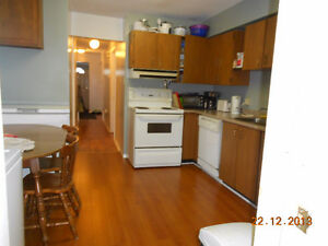 Alfred Street House For Sale Great student rental or family home Kingston Kingston Area image 5