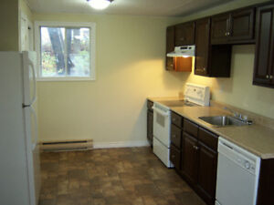 2 Bedroom apartment in Campbellton for February 1, no pets.