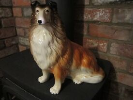 Rough Collie Capstan Dog 31cm Tall