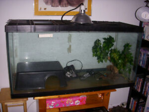 77 gallon terrarium with accessories for sale