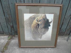 Robert Bateman Buffalo, 1997,  $1000. 40 X 35.