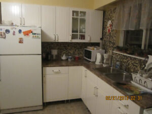 Sunny room for rent from July 1