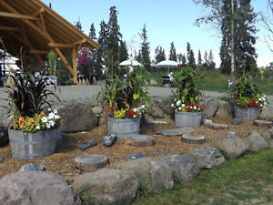 Sunshine Ranch Weddings and Special Events Williams Lake Cariboo Area image 3