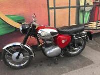 BSA A65 650cc 1964/6