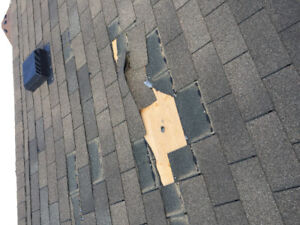 Roof repairs done right,  Rain or shine.