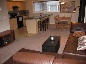 Furnished 3 Bedroom Condo/Garage Available January 1/17