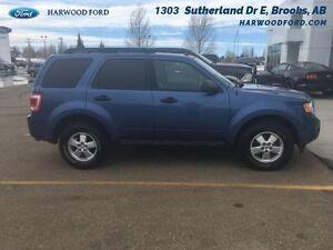 2010 Ford Escape XLT   - $114.96 B/W