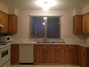 BEAUTIFUL AND QUIET 3BR 1BTH MAIN FLOOR IN HUNTERVIEW DR