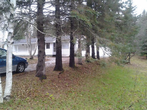 Mobile Home for sale on double lot in Strong Twp.