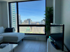 Fully Furnished 1 Bedroom Condo Dntwn Montreal - Gym, Pool, Wifi
