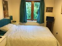 Large double room available Monday to Friday