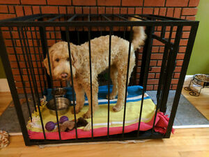 Cage indestructible pour chien d'environ 50 livres
