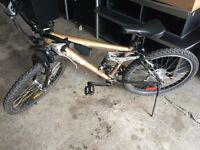 CCM mountain bicycle