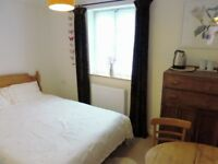 Double, Furnished Room to Rent in Warm Shared House, with Owner and her Dog, Central Penzance