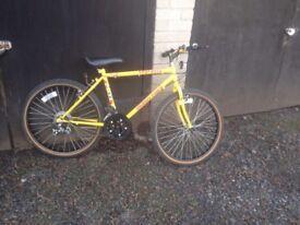 Muddy fox teenager/small adult mountain bike