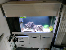 Fish tank 3 ft with built in sump in the tank