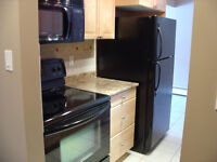 1 bedroom downtown condo for rent
