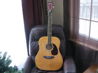 Nova acoustical,6 string/electric guitar/great for campfire/new
