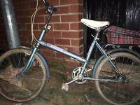 Raleigh denim bike
