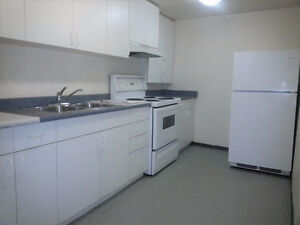 Renovated 2 bedroom lower unit in desirable location - June 1