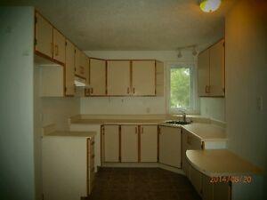 Appartement. avec sous-sol(libre immédiatement)/ Apartment with Gatineau Ottawa / Gatineau Area image 2