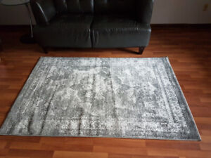 Grey area rug 4 x 6 in perfect condition and clean!!