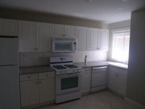 $1350 / 2br - 1300ft2 - Spacious, Fraser Heights 2 bedroom basem