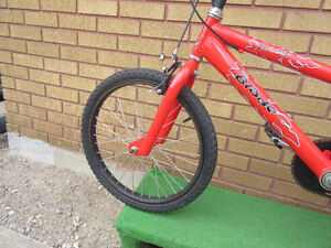 "red mountain bike (BMX).tire size 20""',like new no rust London Ontario image 5"