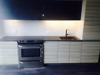 Brand New Condo - Never lived in - 1 Bedroom