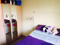 Large double room to let in Sydenham