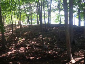 Level and clear 2.5 acre lot - Carrying Place Rd, Cranberry Lake Kingston Kingston Area image 4