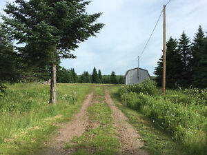 Country Acreage close to Town