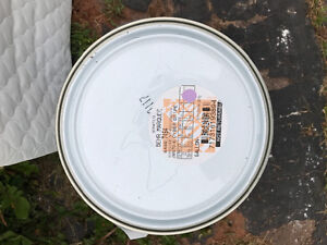 Behr Marquee Cyber Grape paint