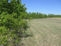Acreage lot worth looking at - 5 minutes east of Saskatoon