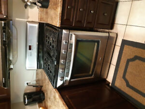 Stainless steel and black gas stove